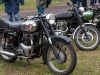 2013-netley-marsh-06-bsa-royal-enfield
