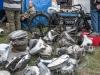 2013-netley-marsh-10-fn-motorblokken